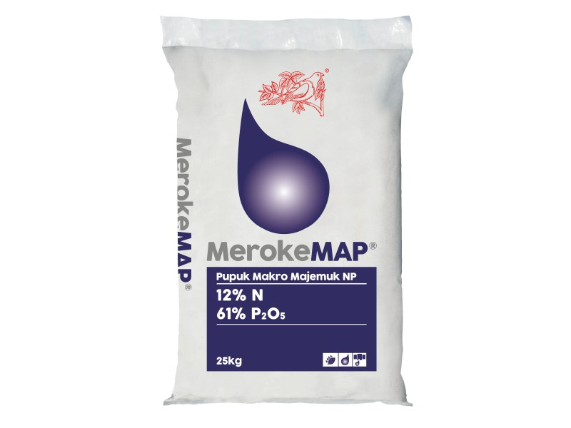 Supplier Meroke MAP Kajen Bergaransi
